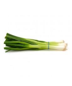 Organic Green Onions (per bunch)