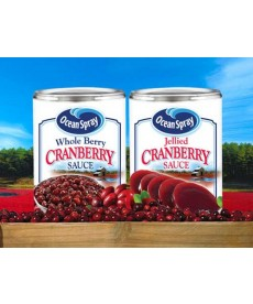 Ocean Spray cranberry sauce 14oz